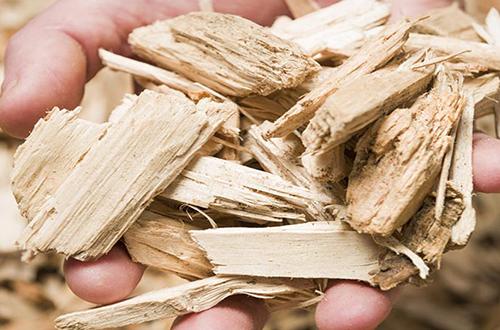 cippato bambù